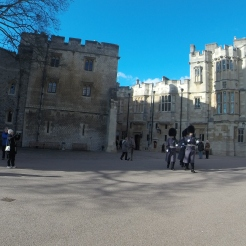 Windsor_Tibjash2015_12
