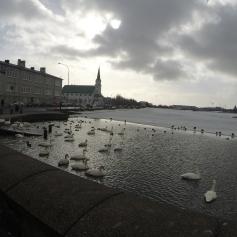 Iceland_Tibjash_002